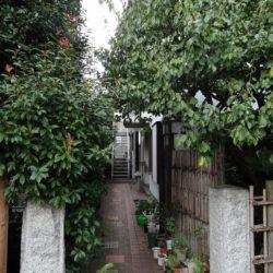 賃貸アパート 桜タウンハウス  103